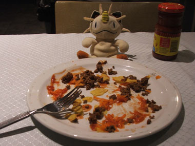 Figure 1.7 - Meowth surveys the Taco Damage
